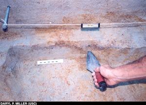 Strato di carbone vegetale di 50000 anni fa Albert Goodyear esamina reperti pre-Clovis (Daryl P. Miller (USC))