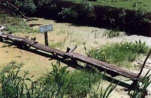 Ricostruzione della Sweet Track al Peat Moors Centre (Andy B)
