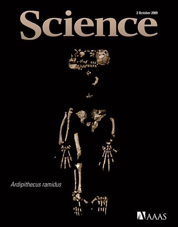 Ci sono voluti 15 anni per estrarre le fragili ossa (Science/AAAS)