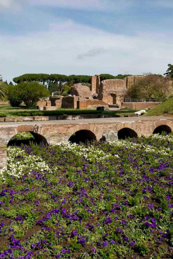 Tornano a fiorire gli orti e i giardini della roma antica for Giardini giapponesi roma