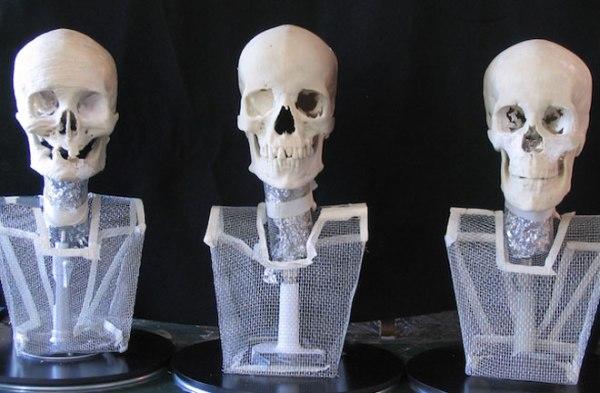 Ricreazione dei tre crani (McGill University)