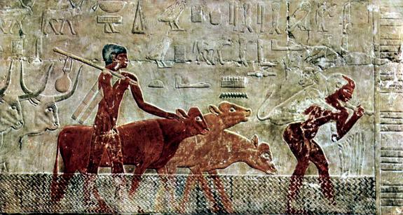 Decorazione sulla tomba di Ti, Saqqara (The Yorck Project)