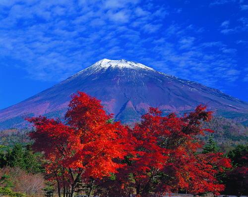 (Shizuoka Prefectural Tourism Association)