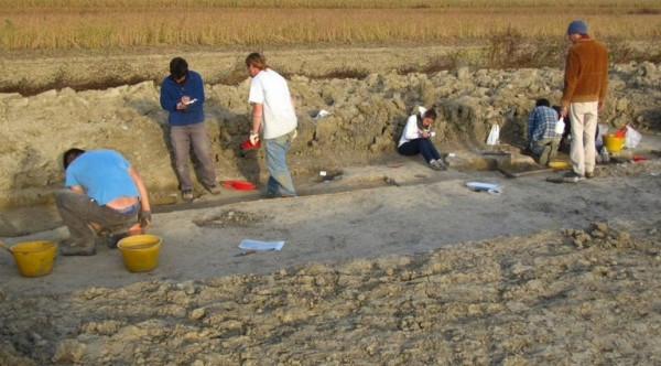 Archeologi all'opera (Università di Udine)