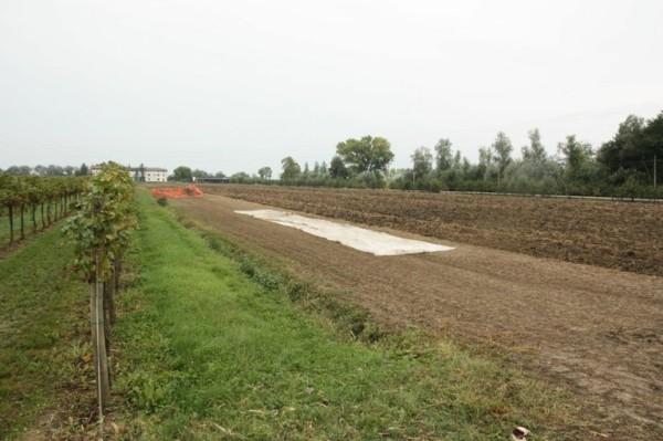 Veduta del sito di Ca' Baredi (Università di Udine)