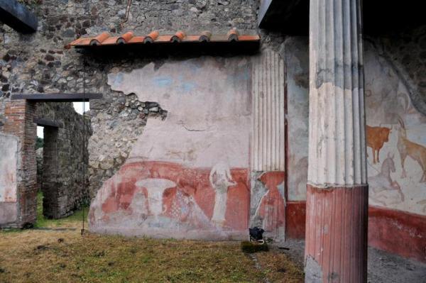 Casa di Romolo e Remo (ANSA)