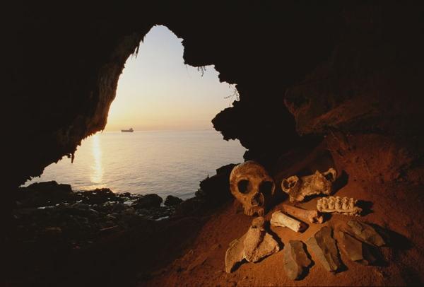 Un cranio femminile di Neandertal trovato a Gibilterra (National Geographic)