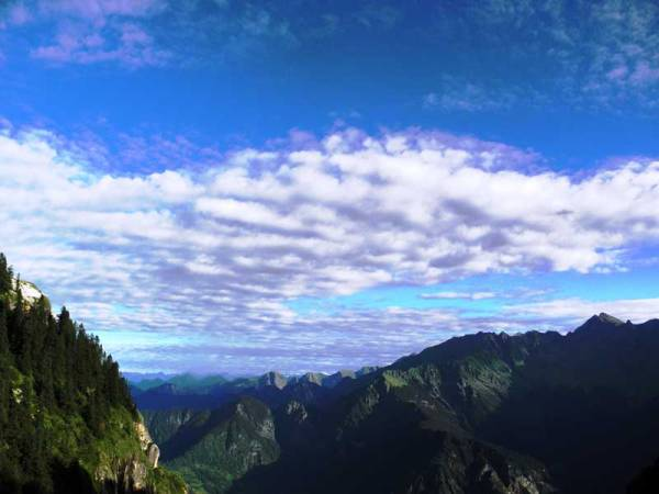 (Dr Sanjeeva Pandey, GHNP view from Dhel meadow 3,700m)