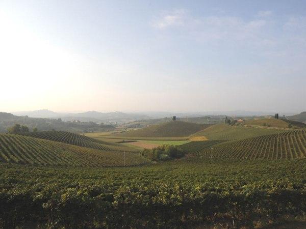 (Landscape of Castelnuovo Calcea - D. Capodiferro, SiTI - Higher Institute on Territorial Systems for Innovation)