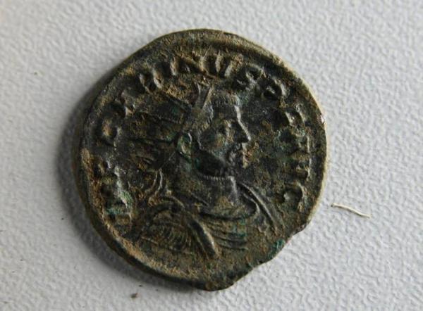 Nummus Radiatus con l'effige imperatore Carino (sec. III)   (ANSA/Soprintendenza archeologica di Roma)