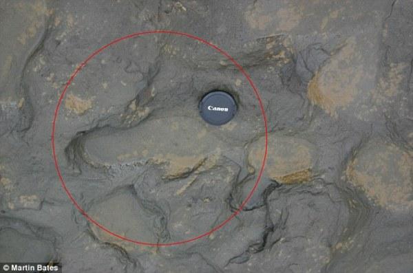 Le orme di un antenato umano rinvenute in Inghilterra (Martin Bates)