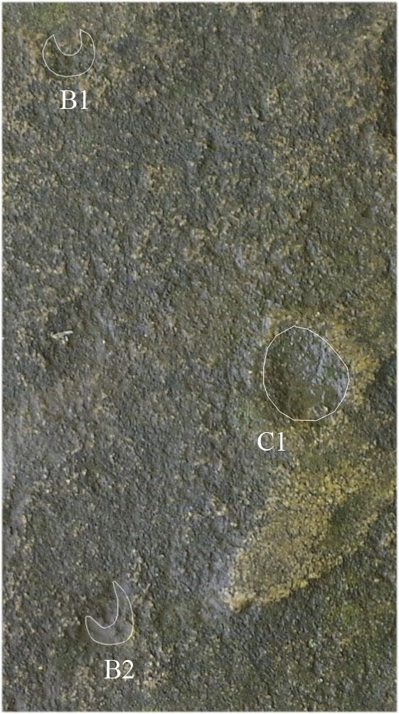 Alcuni punti che tracciano il movimento lunare (Vodolazhsky D.I., 2014)
