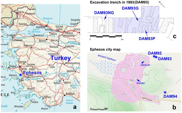 Mappa del sito (PLOS ONE)