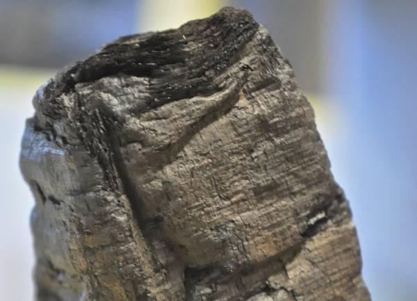 Letti in modo virtuale i papiri di Ercolano sopravvissuti all'eruzione del Vesuvio (E. Brun)