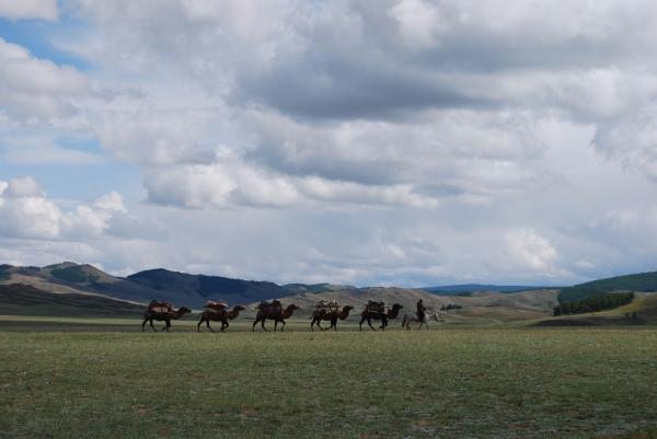 (B. Tsogtbaatar)