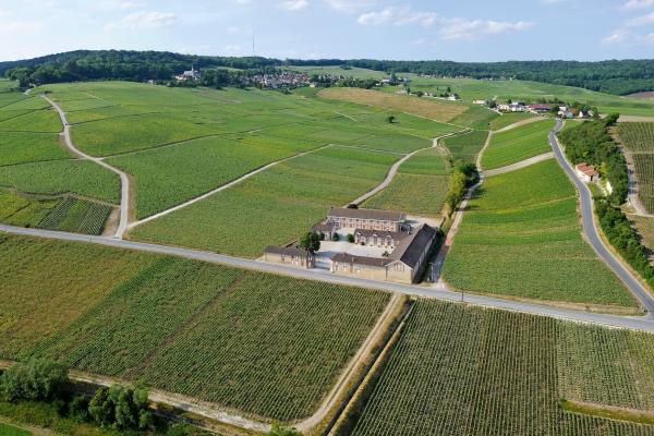 (Michel Jolyot/Association Paysages du Champagne)