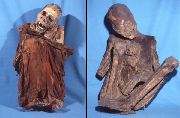 Altre mummie della collezione di Firenze (Gino Fornaciari. Courtesy of Maria Gloria Roselli/Museum of Anthropology and Ethnology of the University of Florence)
