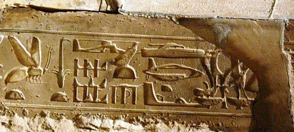 Un'ape raffigurata su un geroglifico egizio (Olek95, Wikimedia)