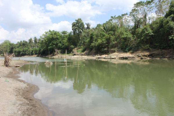 Il fiume Walanae a Paroto, 2 km a east of Talepu (Gerrit van den Bergh)