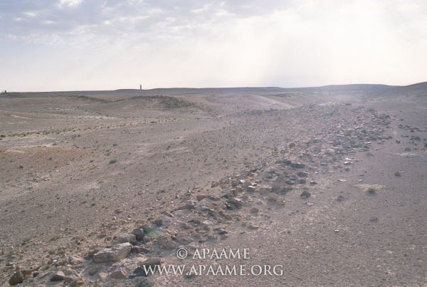 (APAAMEG_20040527_RHB-0012 © Robert Bewley, Aerial Photographic Archive for Archaeology in the Middle East)