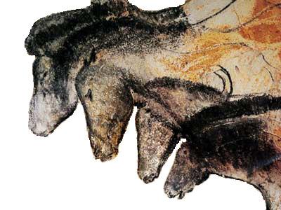 Gruppo di cavalli, disegnato nella grotta Chauvet (Wikimedia)