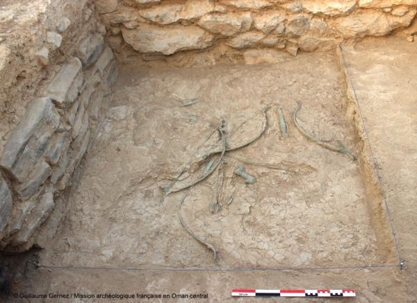 (Guillaume Gernez, Mission archéologique française en Oman central)