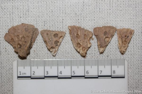 Squame di coccodrillo (The Gebel el Silsila Survey Project)