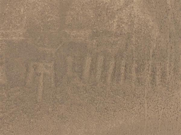 Il nuovo geoglifo scoperto (Masato Sakai, Università di Yamagata)