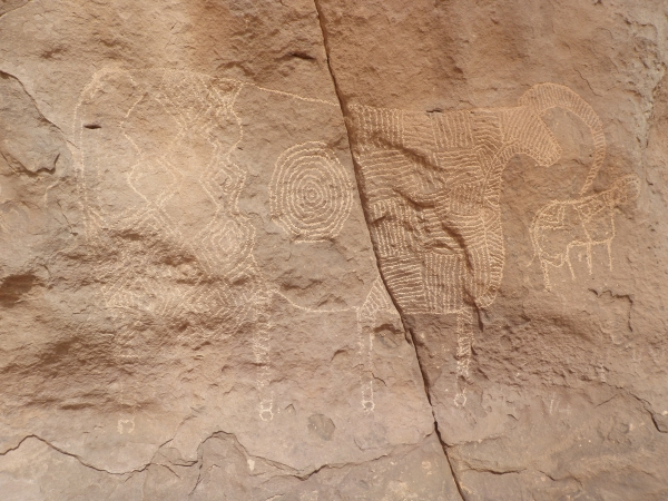 Prints from the bovidienne period on the north of the massif (Comité Technique/ Sven Oehm)