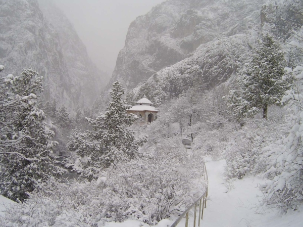 Western Tien-Shan, Padysha-Ata State Nature Reserve: Winter view (Mambetaliyev U.)