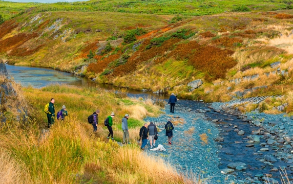 Visitors on a guided tour cross Water Cross River (Mistaken Point Ambassadors Inc)