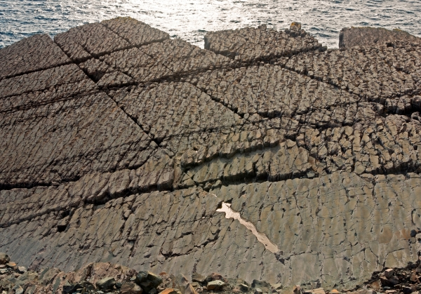Bedding plane cut by conjugate joint sets, multiple other fractures, and a pervasive spaced cleavage (Mistaken Point Ambassadors Inc)