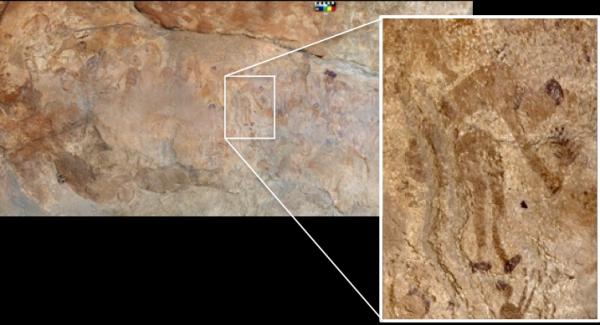 Pittura rupestre che rappresenta una figura umana che raccoglie piante (Missione archeologica nel Sahara, Sapienza Università di Roma)
