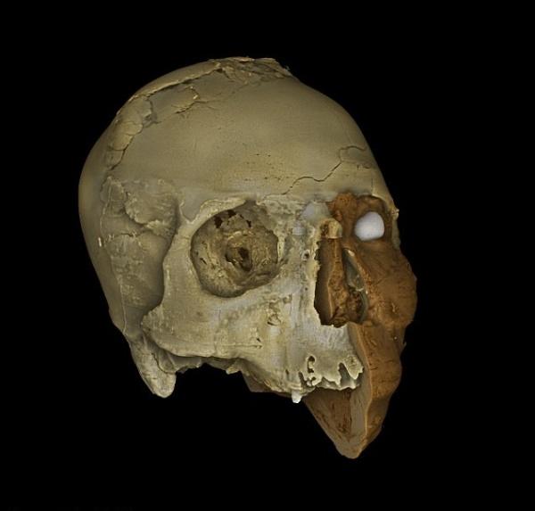 La ricostruzione 3D (British Museum)
