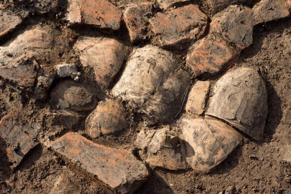 Il suolo (Denis Gliksman, Inrap)