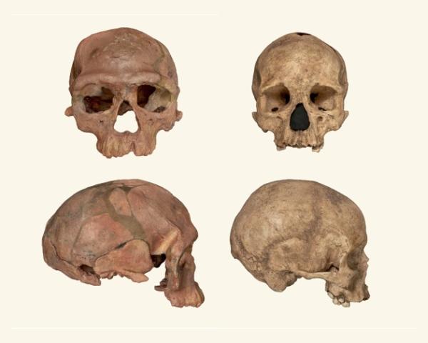 Jebel Irhoud marocco homo sapiens